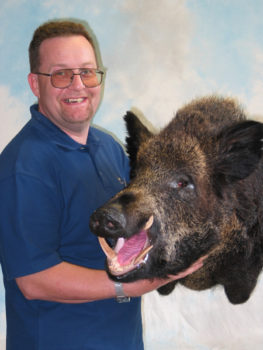 Wild Boar Head by Dave Spaul 2003