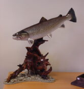 Brown Trout by Peter Scott 2002