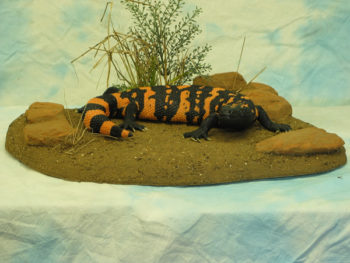 Gila Monster by Stephen Toher