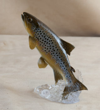 Brown Trout by Peter Scott