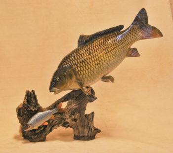 Carp by Peter Scott 2008