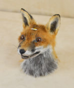 Fox by Kate Wilson