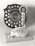Hedgehog by James Dickinson 1989