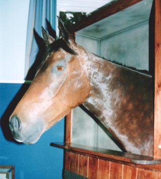 Racehorse by Dave Hollingworth 1998
