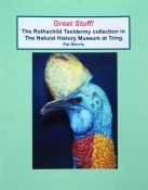 The Rothschild Taxidermy Collection by Pat Morris