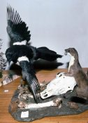 Magpie & Weasel